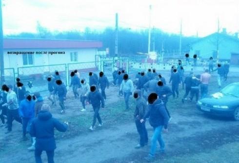 драка фанатов ЦСКА и Зенита