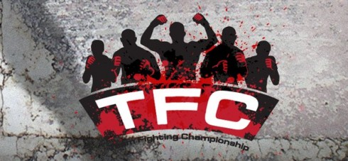Team Fighting Championship